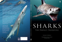 Sharks - The perfect predators